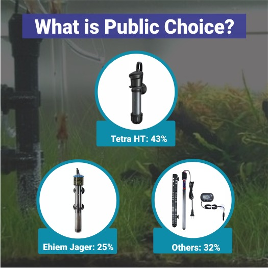Public Choice Percentage
